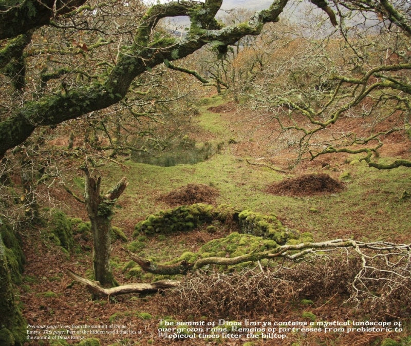 Magical Places Of Britain Book - Dinas Emrys Summit - Viking Dragon Books