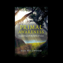 Load image into Gallery viewer, Primal Awareness Book Front Cover by Rob Wildwood - Viking Dragon Books