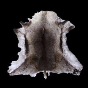 Reindeer Hide - Animal Hides
