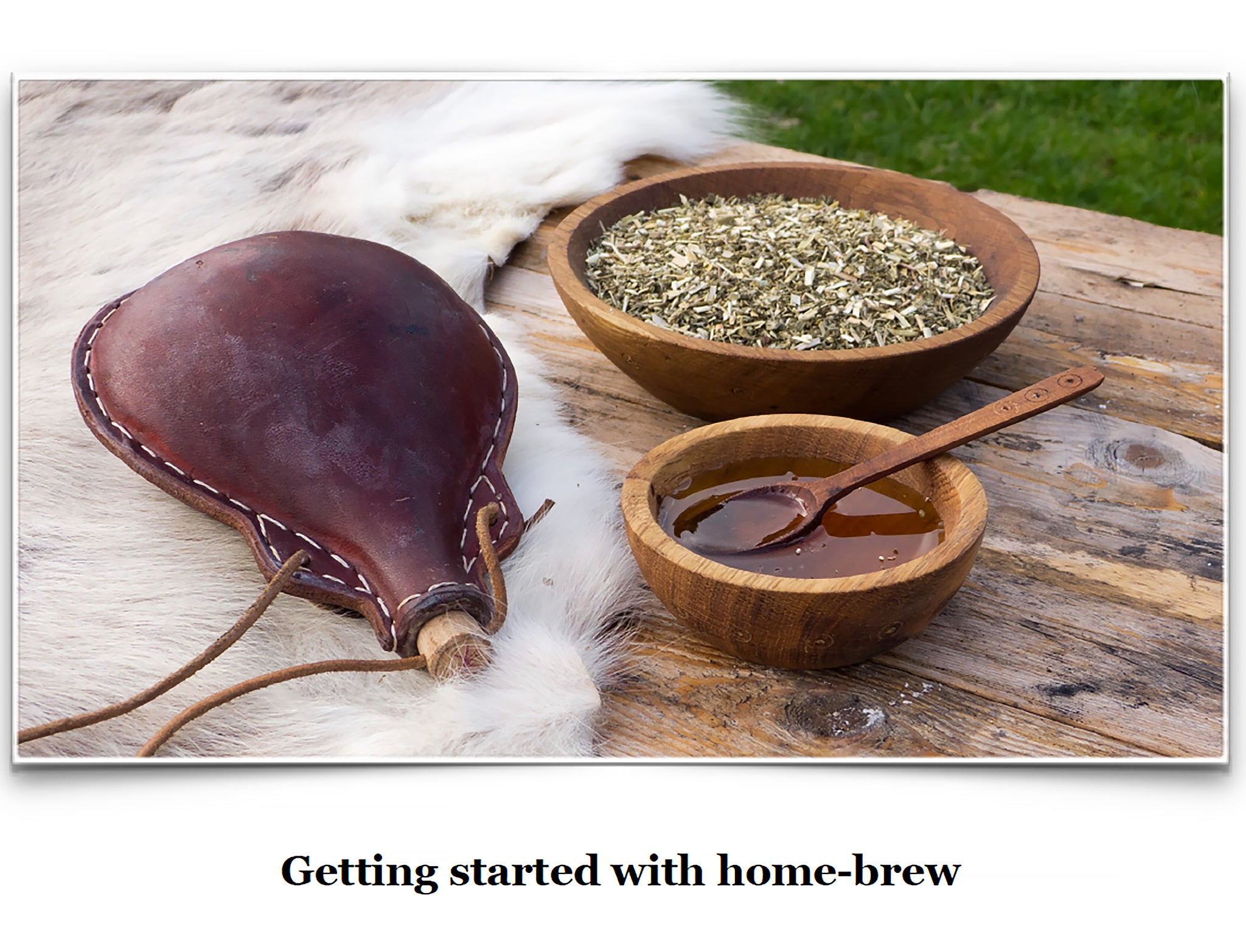 Eat Like a Viking Book - Getting Started with Homebrew