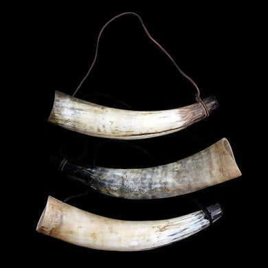 Medium Viking Blowing Horns / Bugles - Horn Bugles