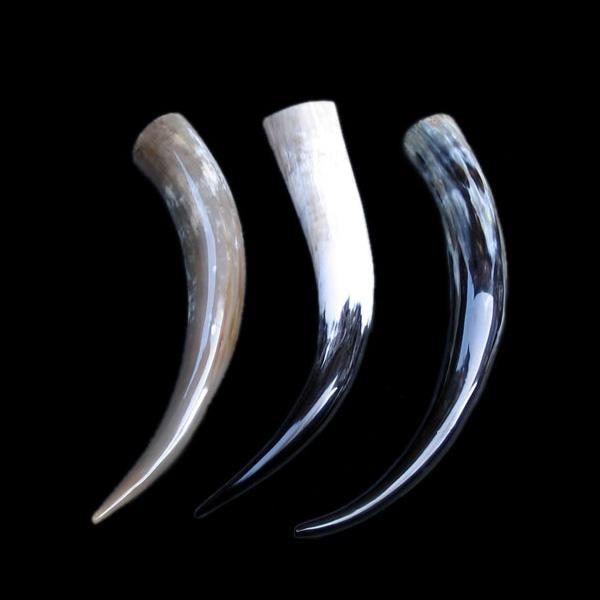Medium Polished Drinking Horn - Viking Drinking Horns