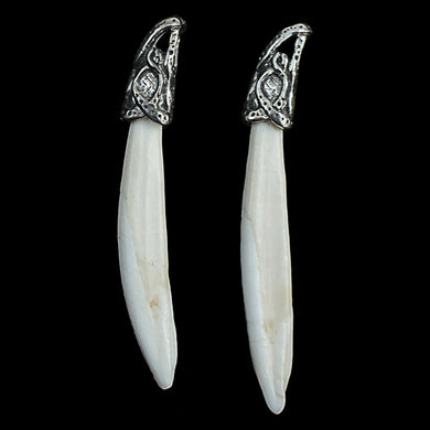 Boar Tusk Pendants with Sterling Silver Dragon Head Hangers