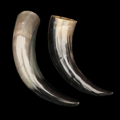 Extra Large Ox Drinking Horn - Viking Drinking Horns