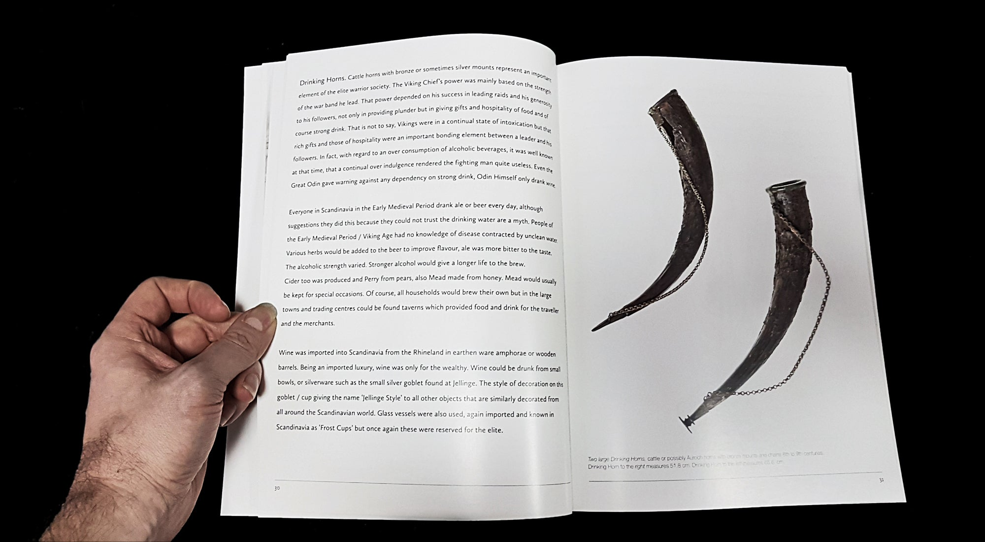 Vikings - Swords Dripping Gold - Silver - Blood - Book - Inside