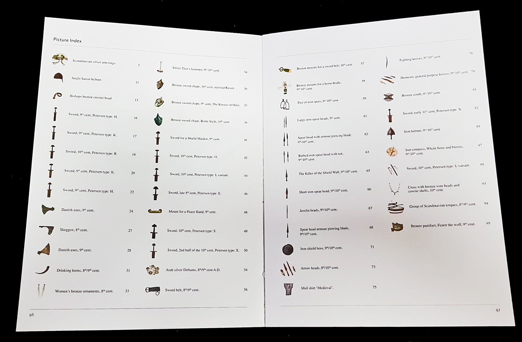 Vikings - Swords Dripping Gold - Silver - Blood - Book - Glossary