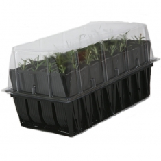 Sherwood Rootrainer Propagator with 32 cells (8 or 12 cm depth plugs)