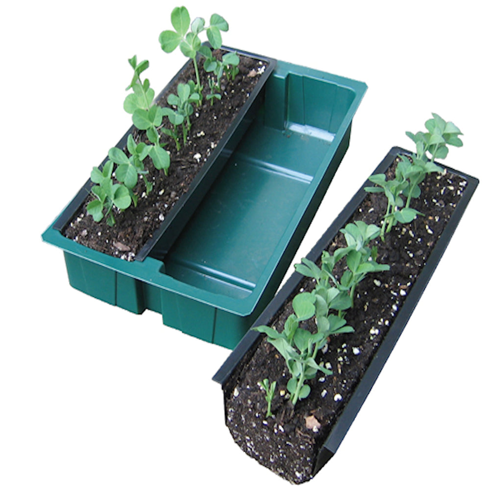 The Gutter Rowplanter Propagator -  64 cm long row