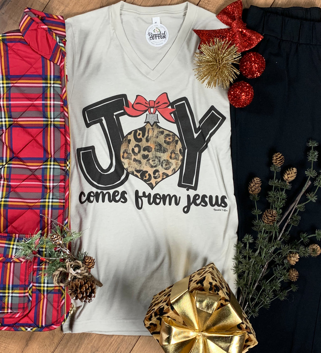 Joy Comes From Jesus
