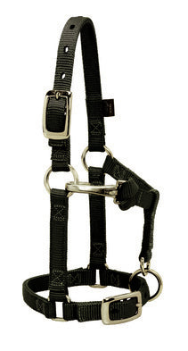 WEAVER-Original Nylon Halter, Adjustable Chin and Throat Snap. Miniature 5/8""