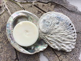 Abalone shell soap dish - sustainably sourced