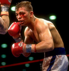 Arturo Gatti Boxing Career DVD