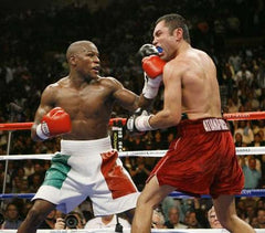 Floyd Mayweather Jr Boxing DVD Career