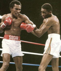 Sugar Ray Leonard Boxing Career DVD