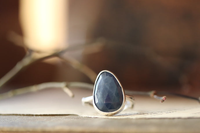 Coyote's Gem- Ring 29 // Size 6