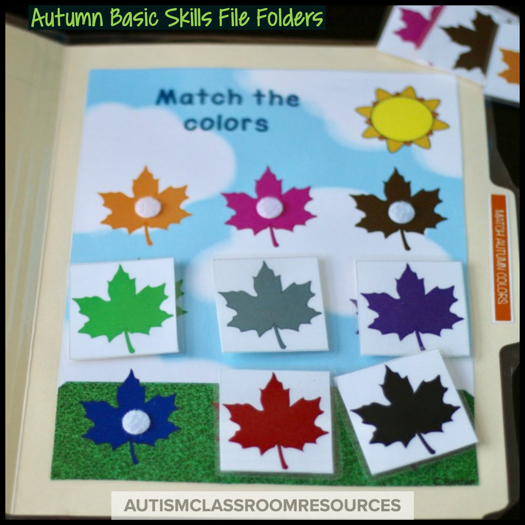 Autumn Numbers File Folders: Matching Tasks for Early Childhood and Special Education