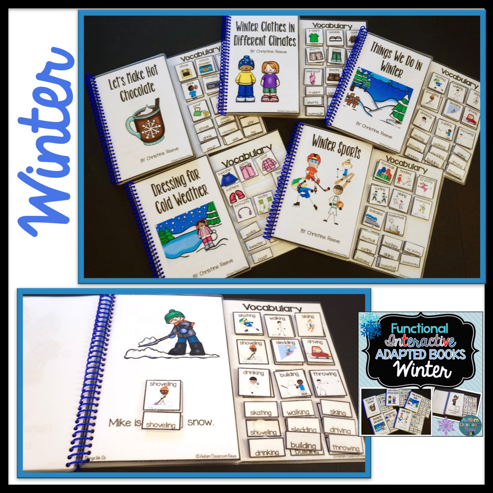 Seasons BUNDLE: Functional Adapted Interactive Books for 4 Seasons