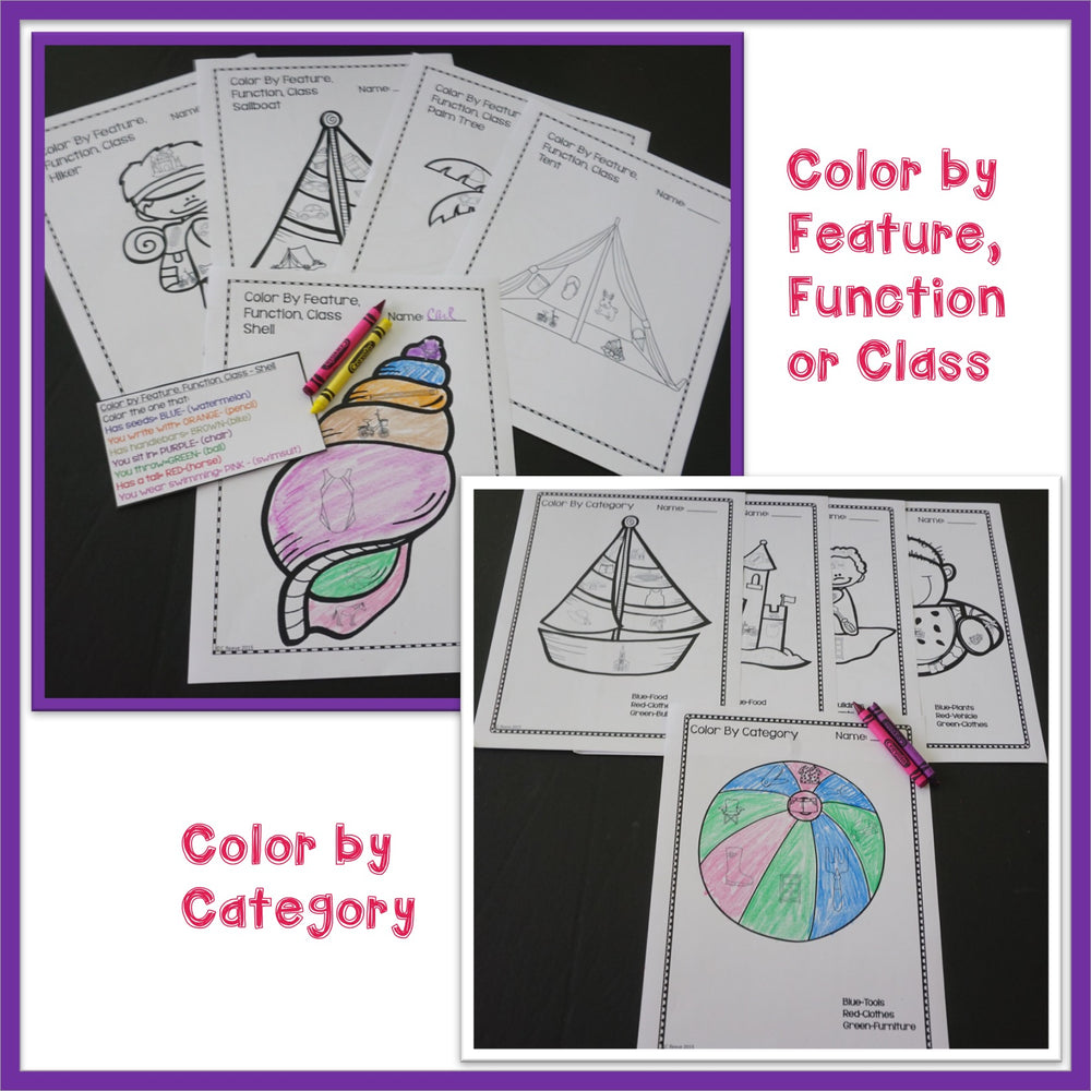 Autism Receptive Vocabulary Activities for SUMMER: Feature Function Class - Autism Classroom Resources