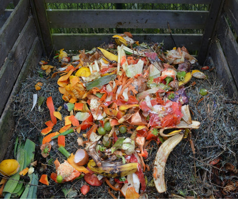 Why you should compost! International Compost Week from pelacase.com