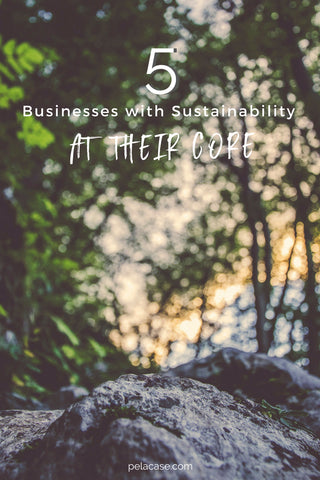 5 businesses with sustainability at their core pelacase.com