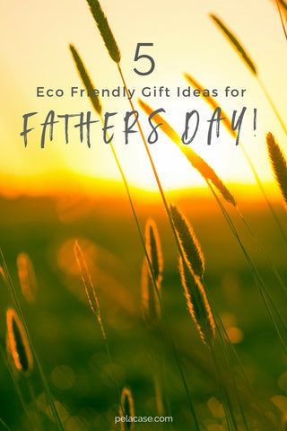 5 eco-friendly gifts for Father's Day pelacase.com