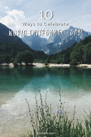 10 ways to celebrate world environment day from pelacase.com