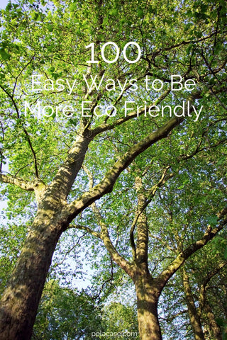 100 Easy Ways To Be More Eco-Friendly