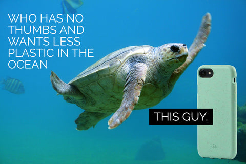 Save the Turtles - Pela iPhone Case for Ocean Conservation