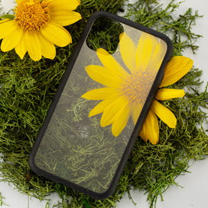 Clear Eco-Friendly iPhone XS Case with Black Ridge