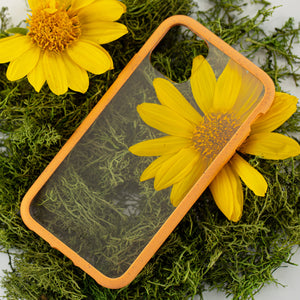 Clear Eco-Friendly iPhone XS Case with Cantaloupe Ridge