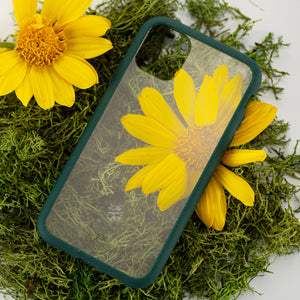 Clear Eco-Friendly iPhone XS Case with Green Ridge