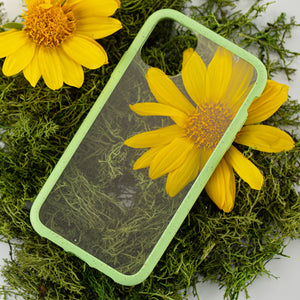 Clear Eco-Friendly iPhone XS Case with Neo Mint Ridge