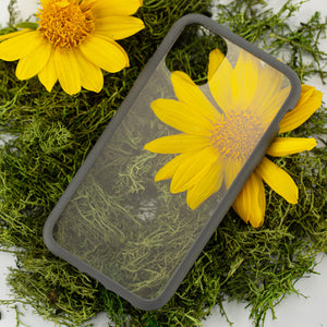 Clear Eco-Friendly iPhone 11 Pro Max Case with Shark Skin Ridge