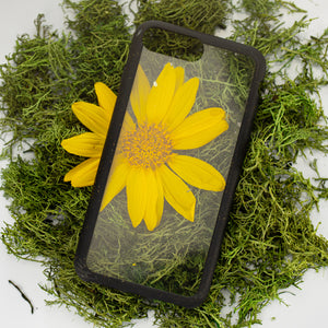 Clear Eco-Friendly iPhone Plus Case with Black Ridge