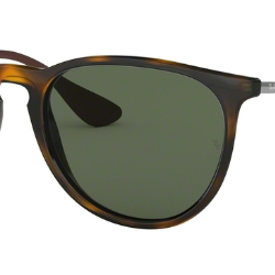 Ray-Ban RB 4171 Erika Replacement Pair Of Non-polarising lenses
