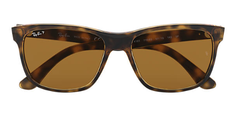 Ray-Ban RB 4181 Replacement Pair Of Polarising Lenses