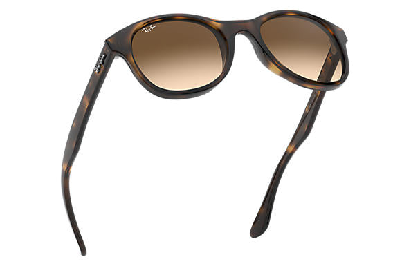 Ray-Ban RB 4203 Sunglasses Replacement Pair Of Non Polarising Lenses
