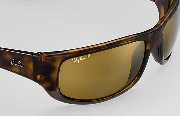 Ray-Ban RB 4283CH Sunglasses Replacement Pair Of End Tips