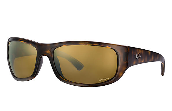 Ray-Ban RB 4283CH Sunglasses Replacement Pair Of Sides