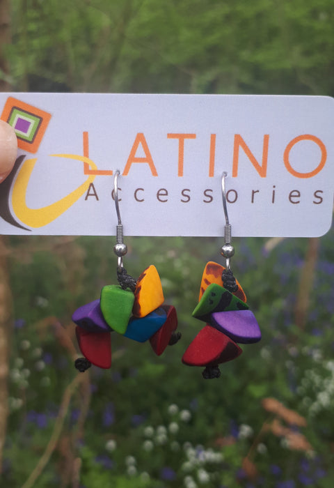 Multicolour Trocitos Earrings