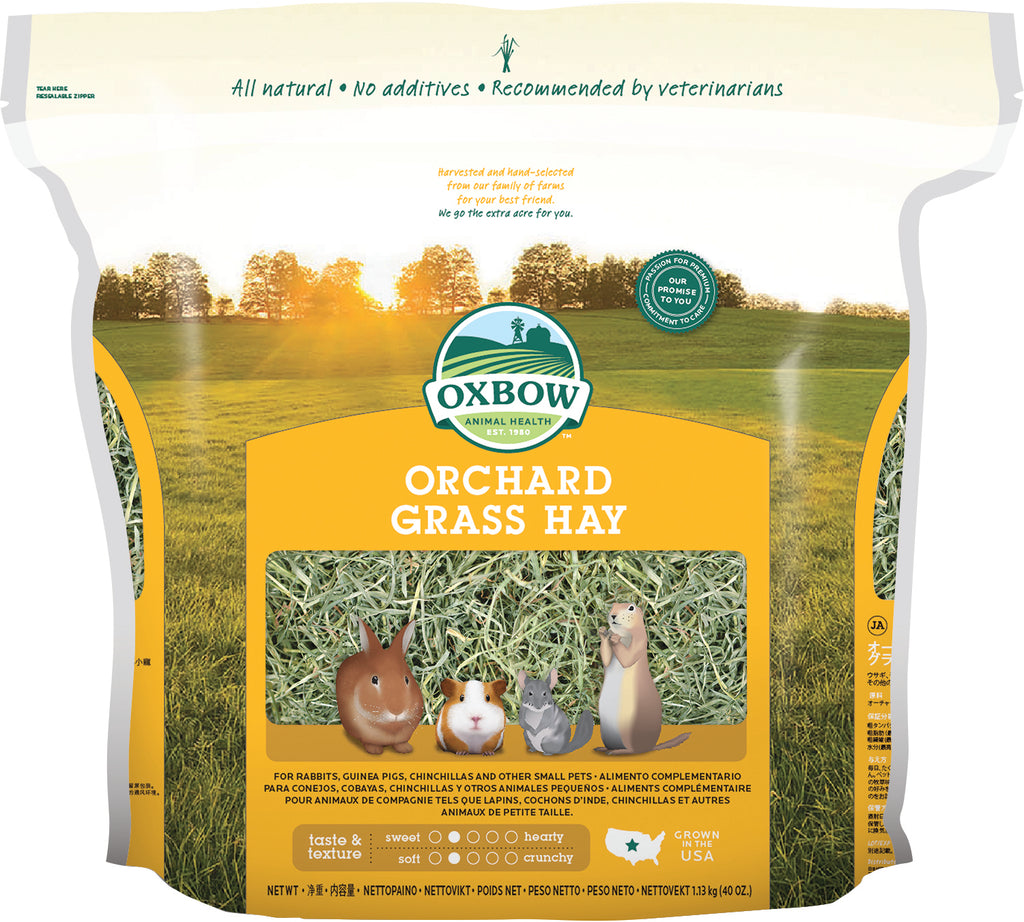 OXB Orchard Grass Hay       40