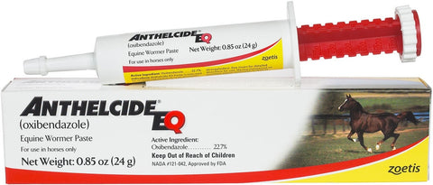 ANTHELCIDE EQ PASTE 24G