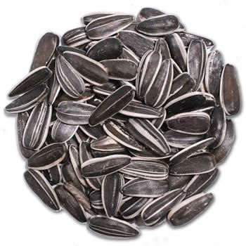 GREY SUNFLOWER SEED #25