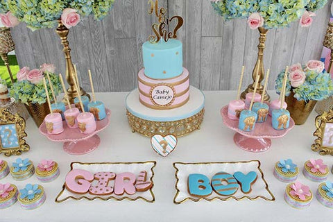 Gender Reveal Cakes and Treats Party Ideas