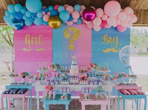 Gender Reveal Girl or Boy Party Idea