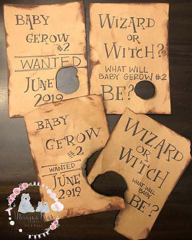 Gender Reveal Harry Potter Theme Party Idea
