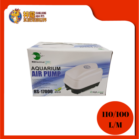 AIR PUMP RS-17000