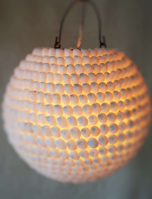 Natural Shell Orb Light