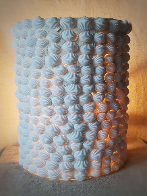 Half Round Shell Wall Light