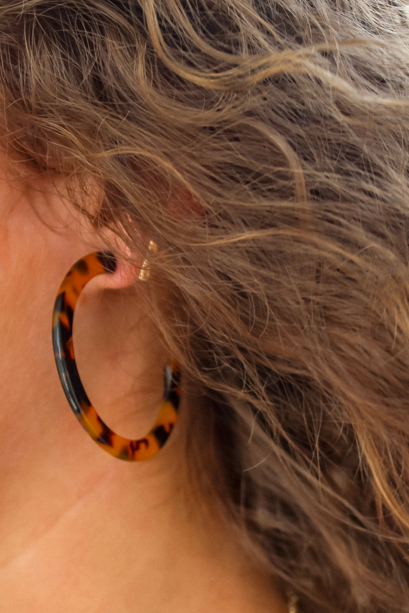Small Brown Tortoise Hoops